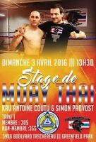 MUAY THAI kickboxing seminar ,work shop de boxe thai kickboxe
