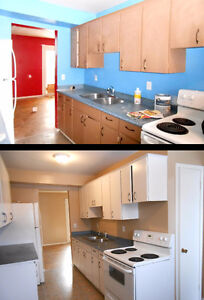 Professional Female Painter with 19 yrs in London best rates London Ontario image 6
