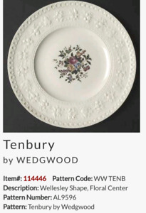 Tenbury  byWEDGWOOD will sell individually or $75 for the lot