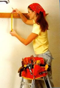 Ladder Tool Box (Ladder and Woman NOT Included)