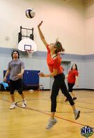 COURT VOLLEYBALL LEAGUE - COED ADULT