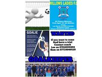 Willows Ladies FC Goalie's Wanted