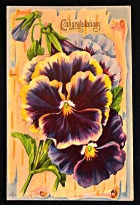 Congratulations Pansy Postcard PC 1920s Unused