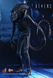 Hot Toys Aliens - Alien Warrior 1/6th Action Figure in store!