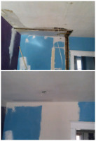 PROFESSIONAL DRYWALL , PLASTER REPAIR AND PAINT