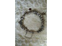 PANDORA BRACELET 23 CHARMS PLUS THE CHAIN FASTER EXCELLENT CONDITION WORTH OVER £1000