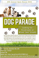 Looking for AVC Dog Parade Participants