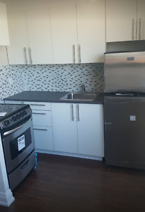 Renovated bachelor unit in Liberty Village!