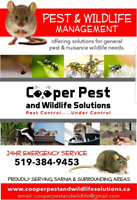 Pest and Wildlife  Solutions