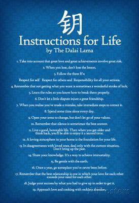 Dalai Lama Instructions For Life Blue Motivational Poster Art Print   13X19