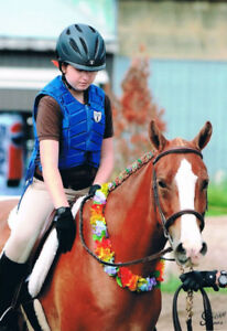 Well Schooled Lg Pony Available for Part Board &/or lessons