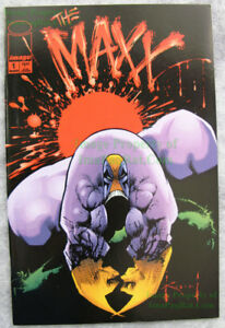 The Maxx #1 - 1st Ongoing Series IMAGE - Sam Kieth Art EXCELLENT