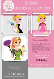 Moon domestic cleaning services