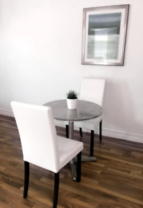 1 Bedroom Furnished Downtown Condo