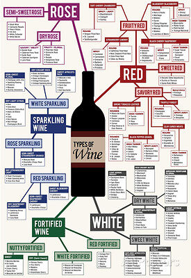 Types Of Wine Chart Poster Print  13X19