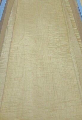 Curly Maple Figure Wood Veneer 9 X 65 Raw No Backing 142 Thickness A Grade