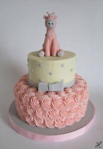 Custom Baby Cakes