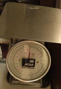 Utility Kitchen Weighing Manual Scale