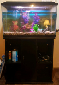 30 gallon fish tank with stand and accessories