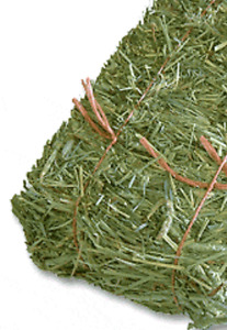 Wanted! Small bails fresh Timothy Hay.