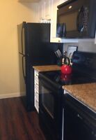 Large 1 Bedroom Mission Condo for Rent
