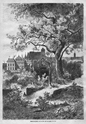 """""""Ansicht von Zabern"""" von der Villa Gast aus gesehen. Original Holzstich von 1871"""