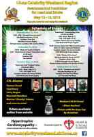 Lions celebrity weekend for Heart and stroke foundation