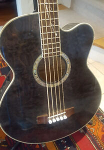 MIchael Kelly Dragonfly 5 String Electric/Acoustic Bass