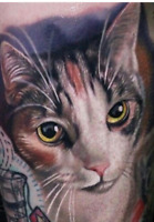 Looking for tattoo artist... Real life cat portraits