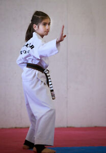 Free Trial  Class at Five Rings Tae Kwon Do Kitchener / Waterloo Kitchener Area image 5
