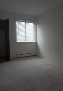 Room for rent near Lansdowne Station