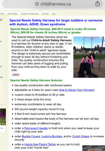 Safety Harness Special Needs