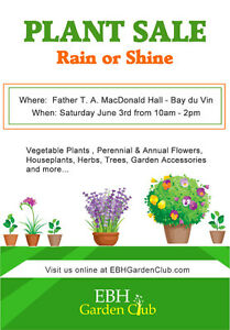 Rain or Shine Plant Sale June 3rd - Bay du Vin