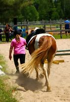 Summer fun horseback riding camp!!!