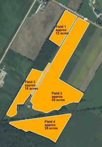 150 acre farm for sale Kitchener / Waterloo Kitchener Area image 2
