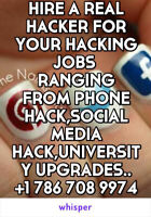 CYBER SECURITY SERVICES (PHONE HACK)