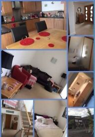 Furnished room in a 4 bed apartment to rent in Sedgley - £366 pcm includes bills