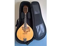 Mandolin, case, strap and book