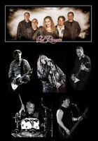 Working Windsor/Essex County cover band seeking guitarist