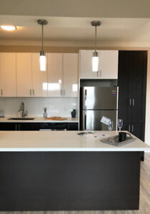 Newly Renovated Burlington Apartment - 2 Bedrooms