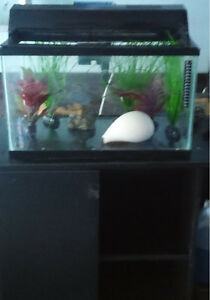 FISH TANKS FOR SALE!!! 10g