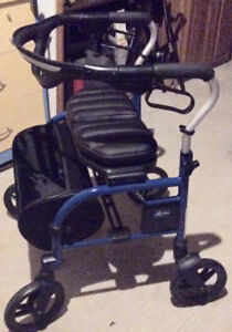 Adult Deluxe Walker with Carry Bag Add-On