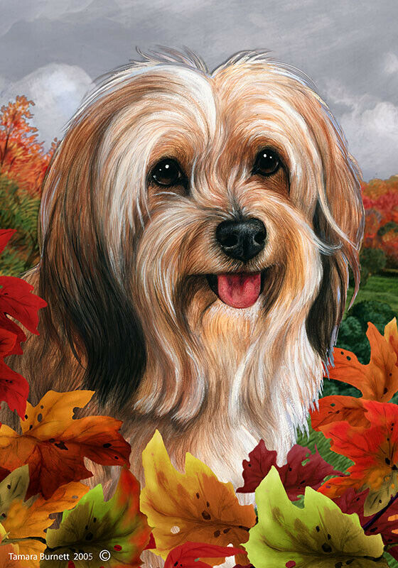 Fall House Flag - Red Sable Tibetan Terrier 13480