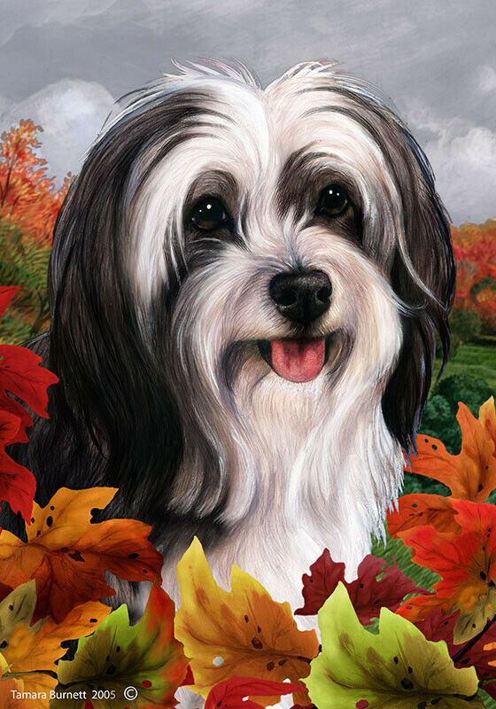 Fall House Flag - Black and White Tibetan Terrier 13478