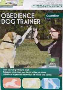New Obedience Dog Trainer