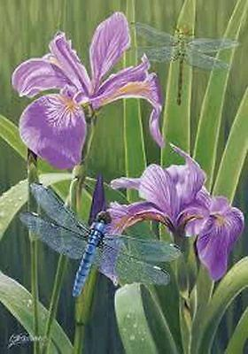 "Iris Dragonflies House Flag Spring Decorative Custom Decor 28"" x 40"""