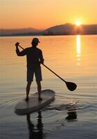 PADDLE BOARD WANTED