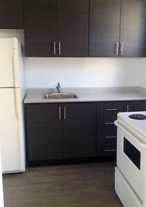LARGE Two Bedroom, PLUS den Apartment Available December 1st