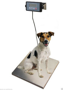 """Brand New 400lb Digital Shipping Scale 16.75"""" x 13.75"""" Stainless"""