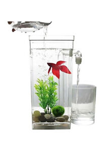 Small Fish Tank, net, cleaner (self cleaning) (2 available)